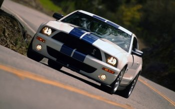 Vehicles - Ford Mustang Shelby Cobra Gt 500 Wallpapers and Backgrounds ID : 524131