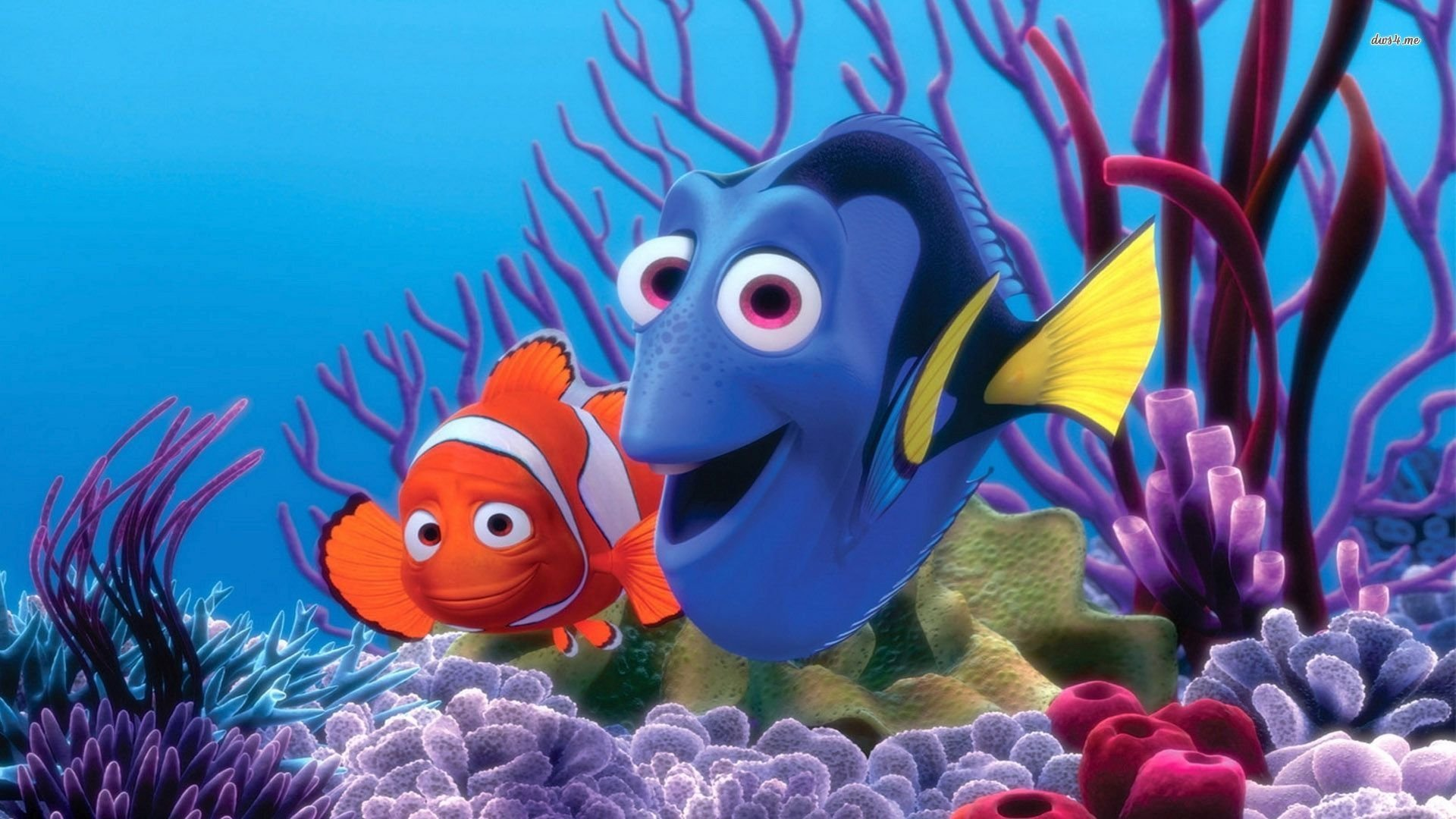 Finding Nemo D Animasi Hd Wallpaper: Le Monde De Nemo Fond D'écran HD