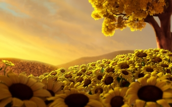 Terra - Sunflower Wallpapers and Backgrounds ID : 526597