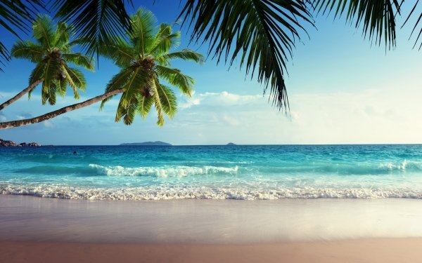 Tierra/Naturaleza Tropico Sea Tropics Seychelles Seychelles Island Fondo de pantalla HD | Fondo de Escritorio