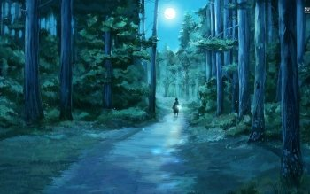 Fantasy - Forest Wallpapers and Backgrounds ID : 529235