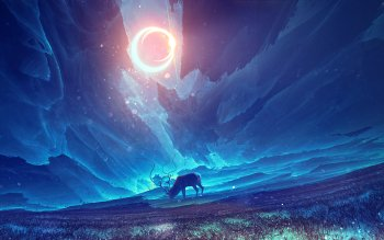 Fantasy - Tiere Wallpapers and Backgrounds ID : 531424