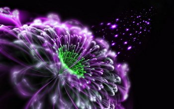 Abstract - Fractal Wallpapers and Backgrounds ID : 532788