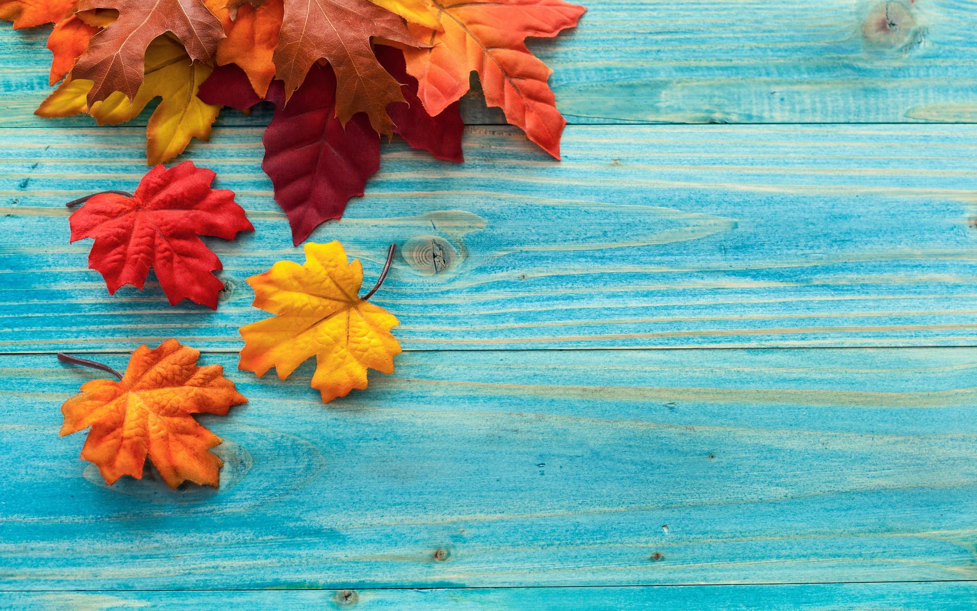 fall hd wallpaper background image 1920x1200 id 542962