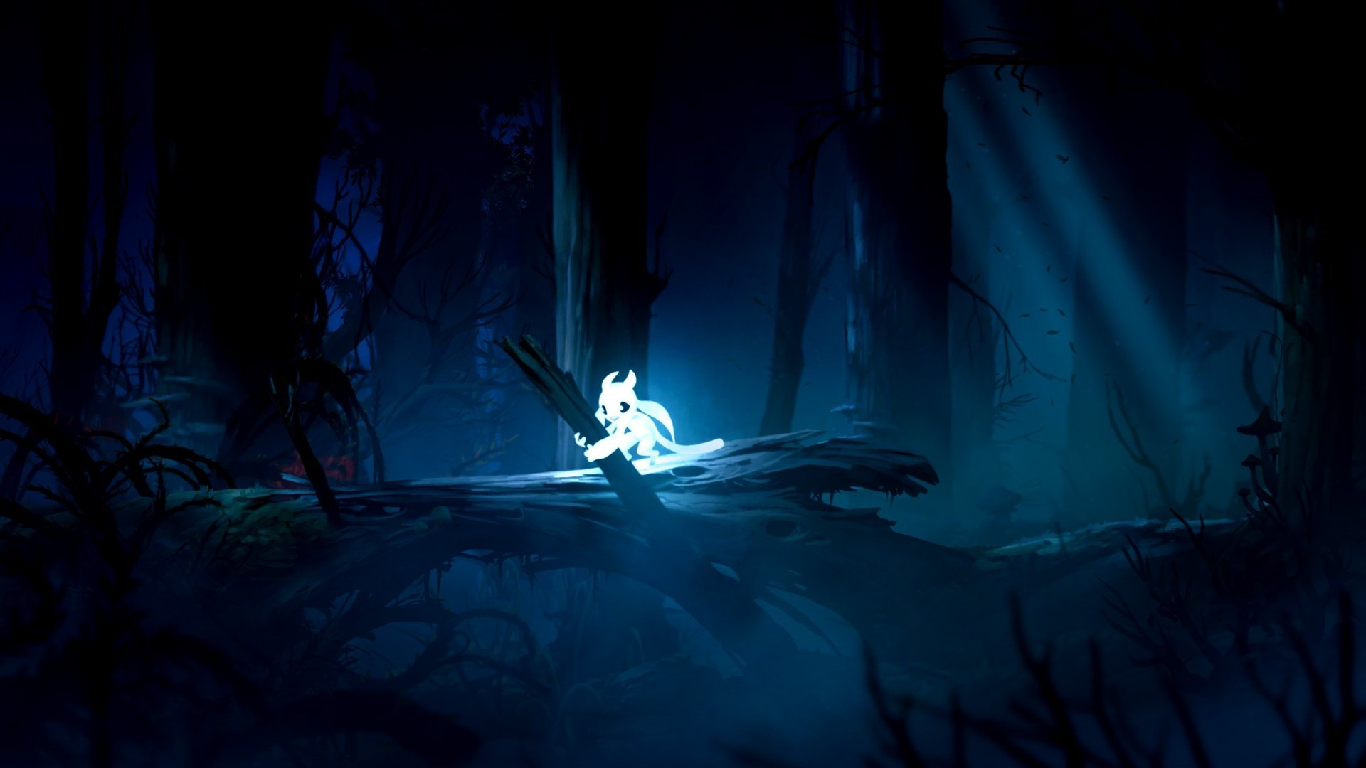 ori and the blind forest hd wallpaper | background image | 1920x1080