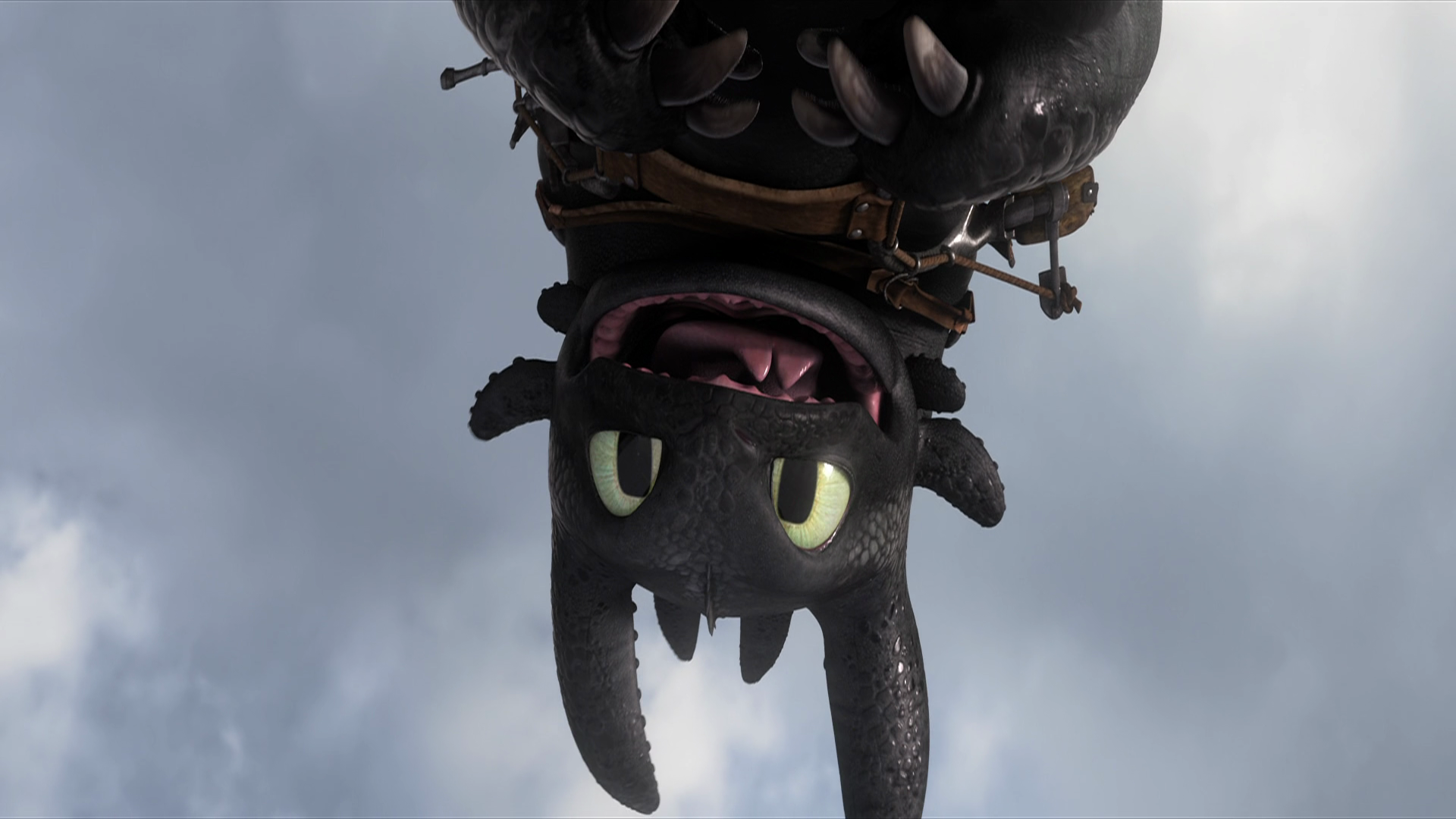httyd toothless upside down wallpaper - photo #9
