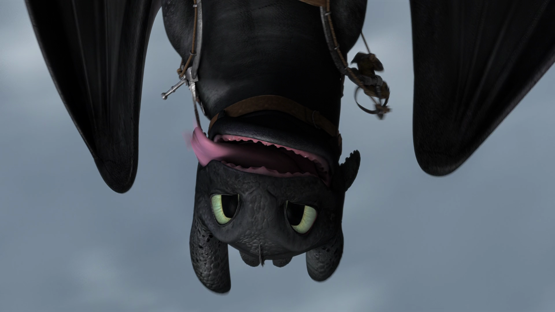httyd toothless upside down wallpaper - photo #4