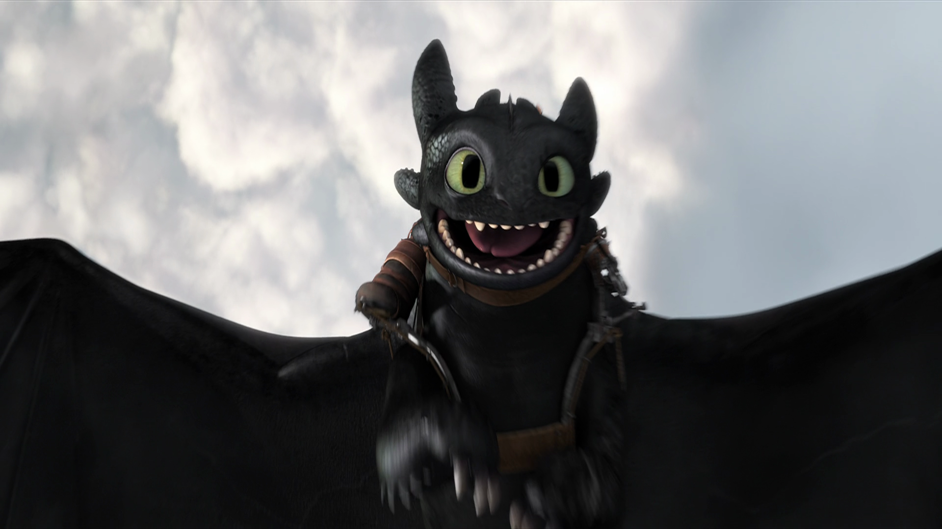 Toothless How To Train Your Dragon Wallpapers ID551669