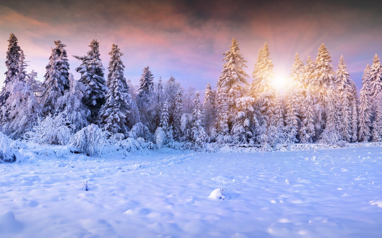 Winter full hd wallpaper and background image 2880x1800 for Sfondi invernali desktop