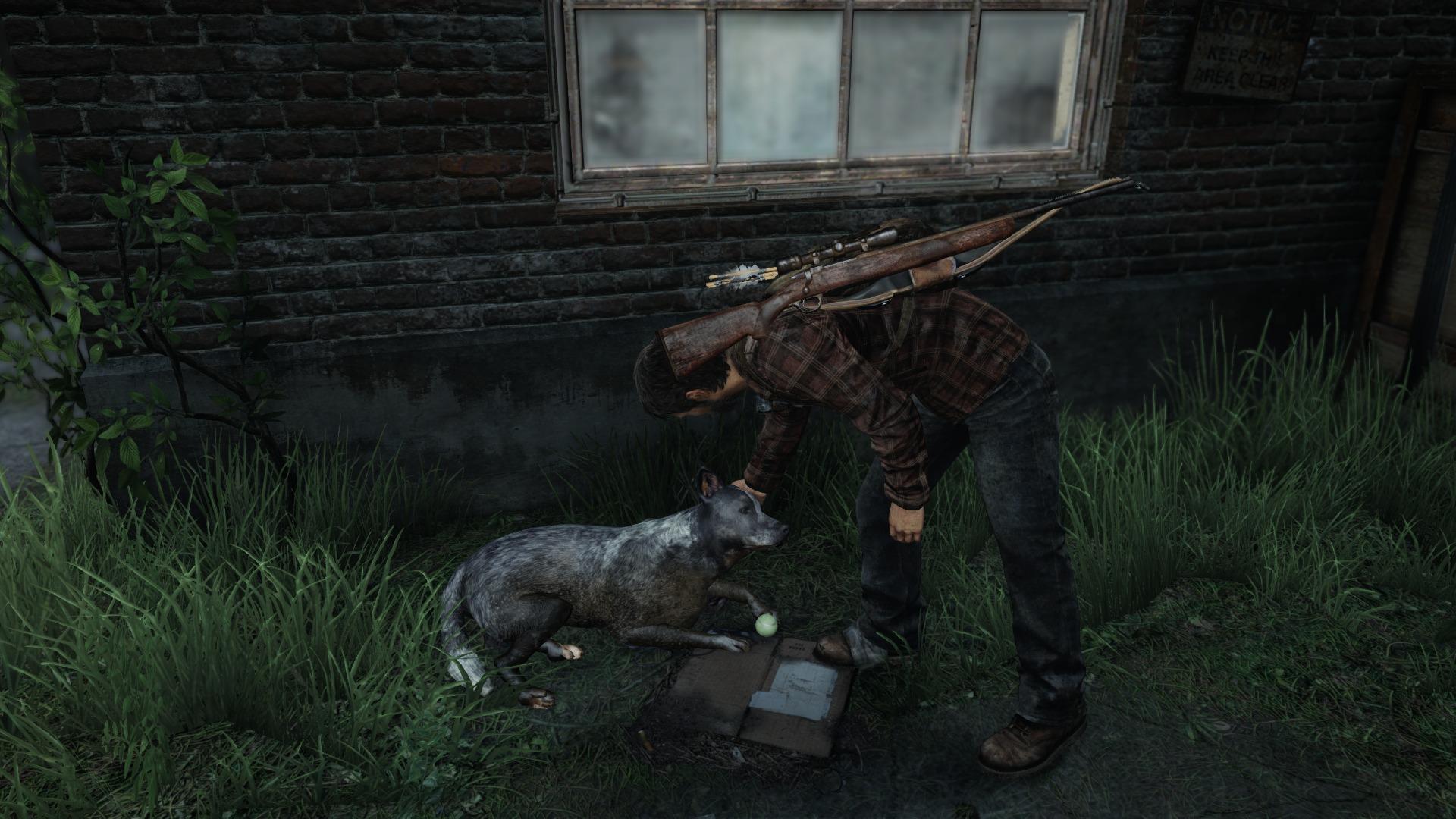 210 The Last Of Us Papéis De Parede Hd: The Last Of Us Papéis De Parede, Plano De Fundo Área De