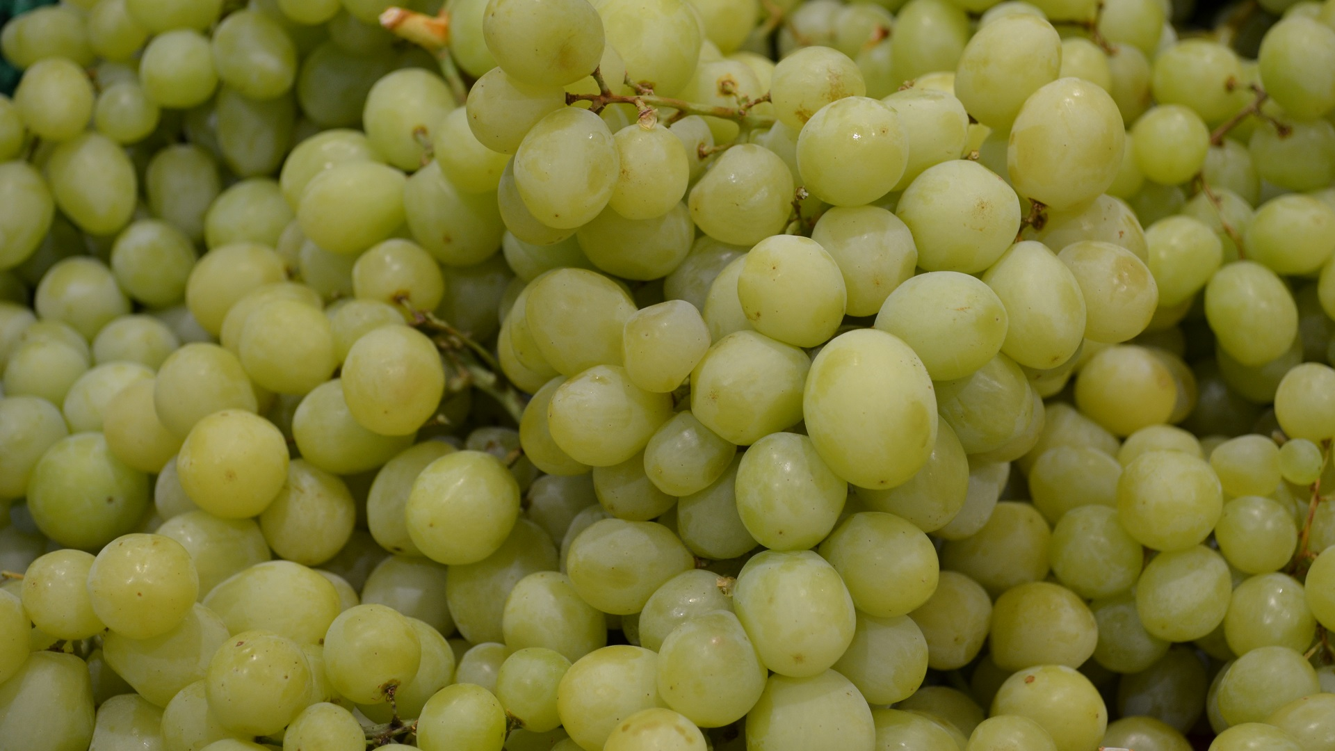 Green Seedless Grapes Full HD Wallpaper and Background ...