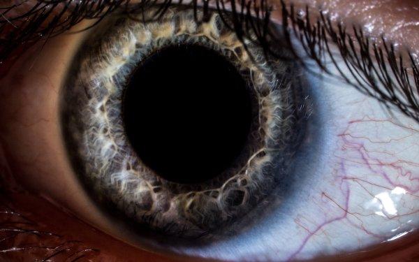 Artistic Eye HD Wallpaper | Background Image