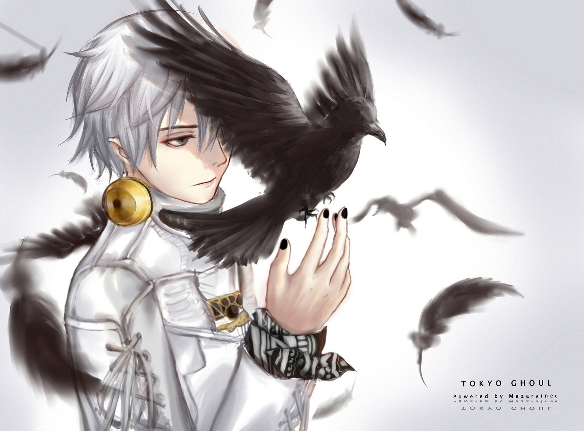 136 Crow HD Wallpapers