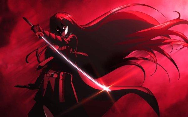 Anime Akame ga Kill! Akame HD Wallpaper | Background Image