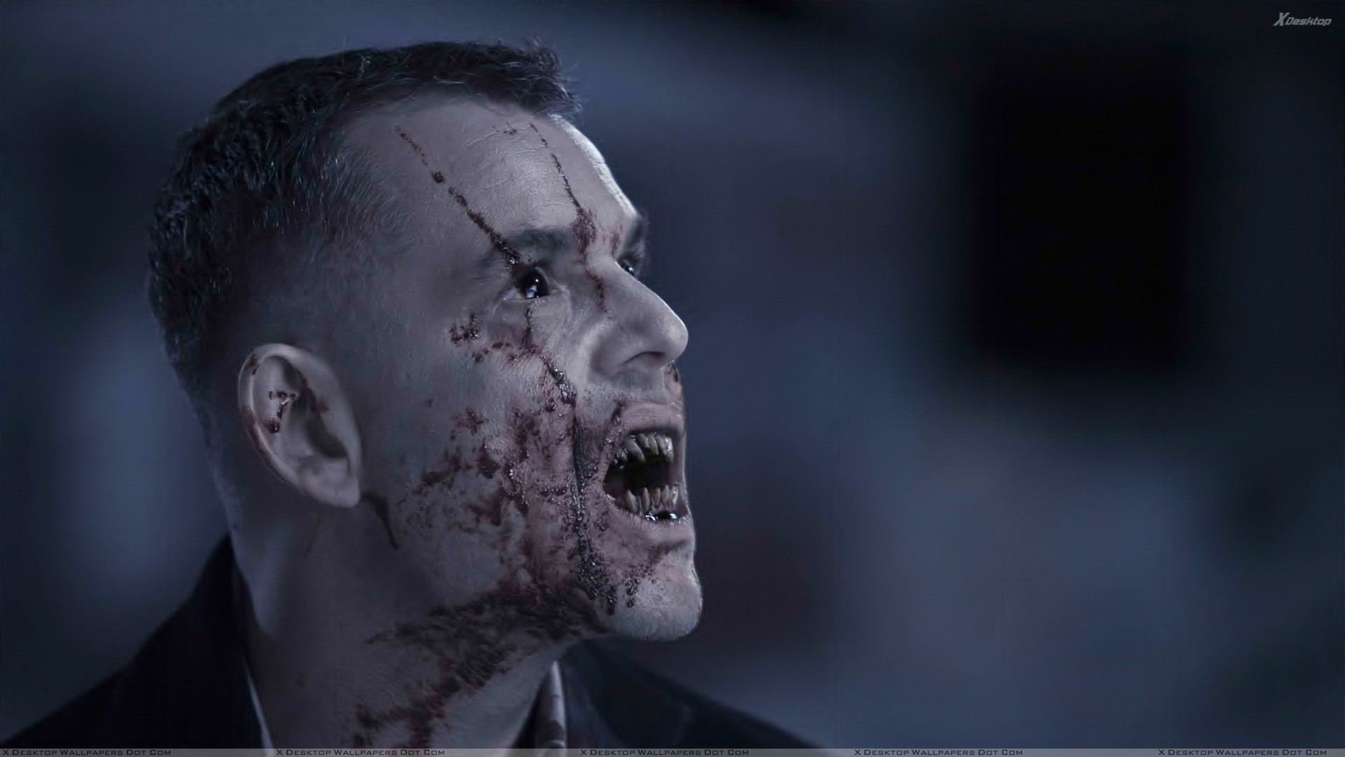 30 Days Of Night Hd Wallpaper Background Image 1920x1080 Id