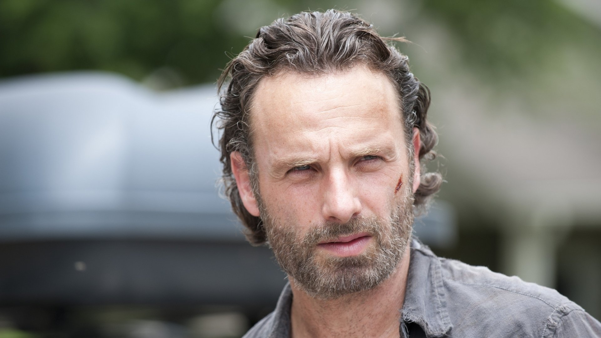 The Walking Dead Full HD Wallpaper And Background Image