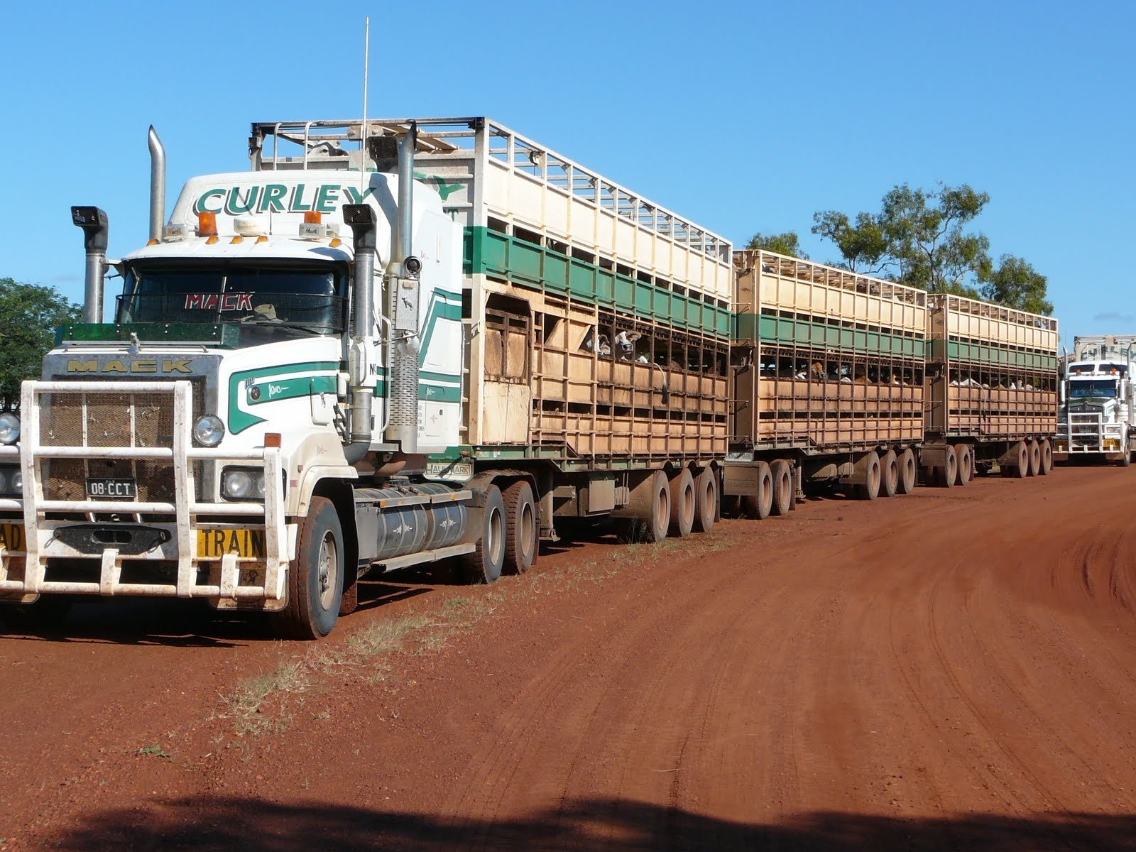 Cattle-hauler Road Train In Western Australia  Wallpaper and