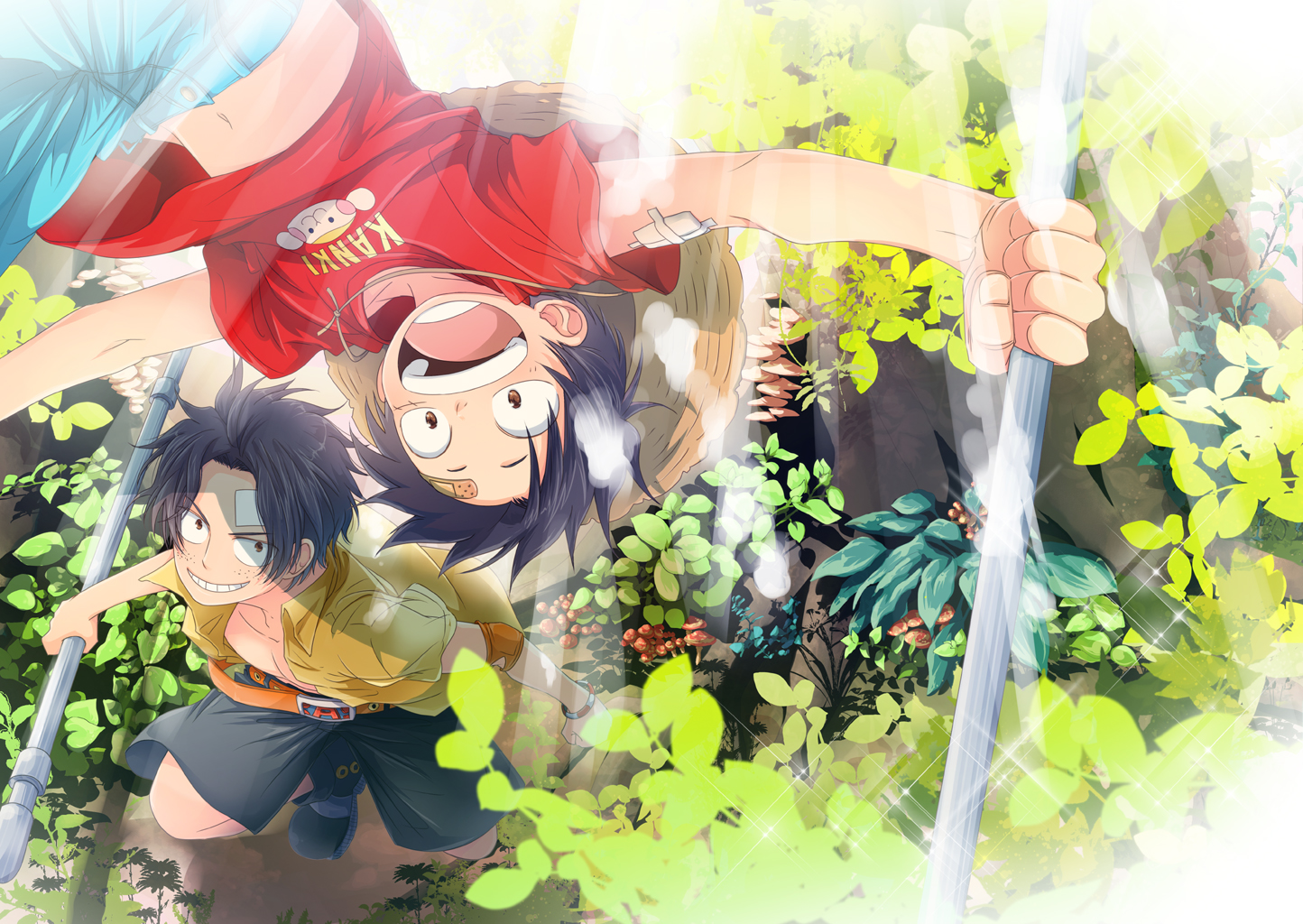 Luffy and Ace Wallpaper and Background Image | 1444x1024 | ID:650008 - Wallpaper Abyss
