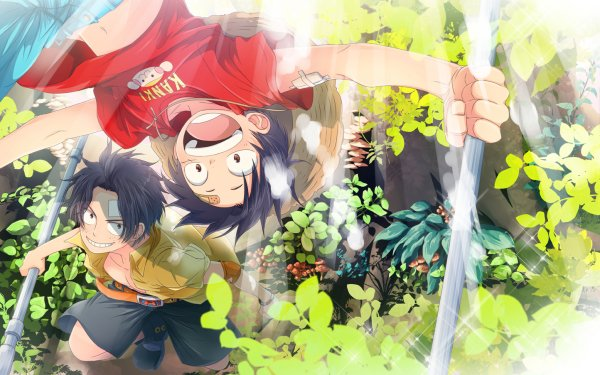 Anime One Piece Monkey D. Luffy Portgas D. Ace HD Wallpaper   Background Image