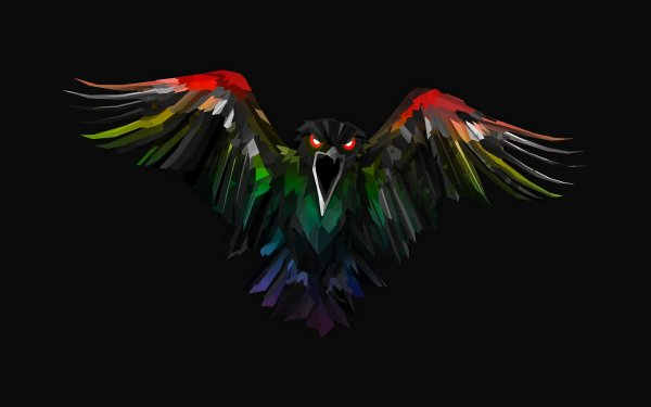 Music Knife Party Colors Bird Album Cover HD Wallpaper | Background Image