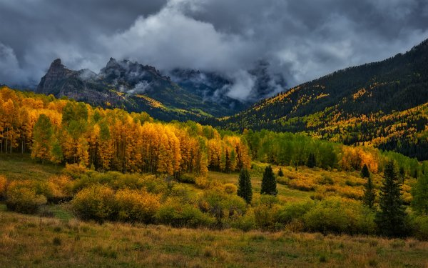 Earth Landscape USA Colorado Mountain Fall Forest Cloud Nature HD Wallpaper | Background Image