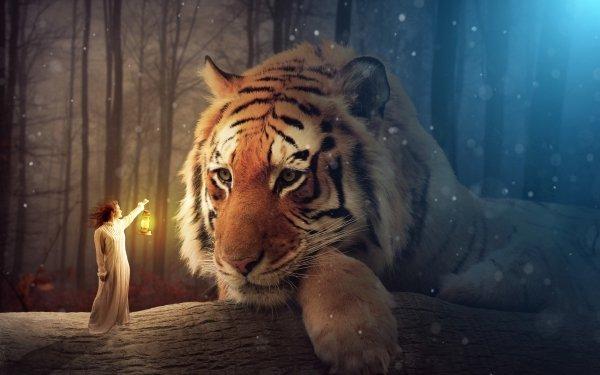 Fantasy Tiger Fantasietiere Wald Laterne HD Wallpaper | Hintergrund