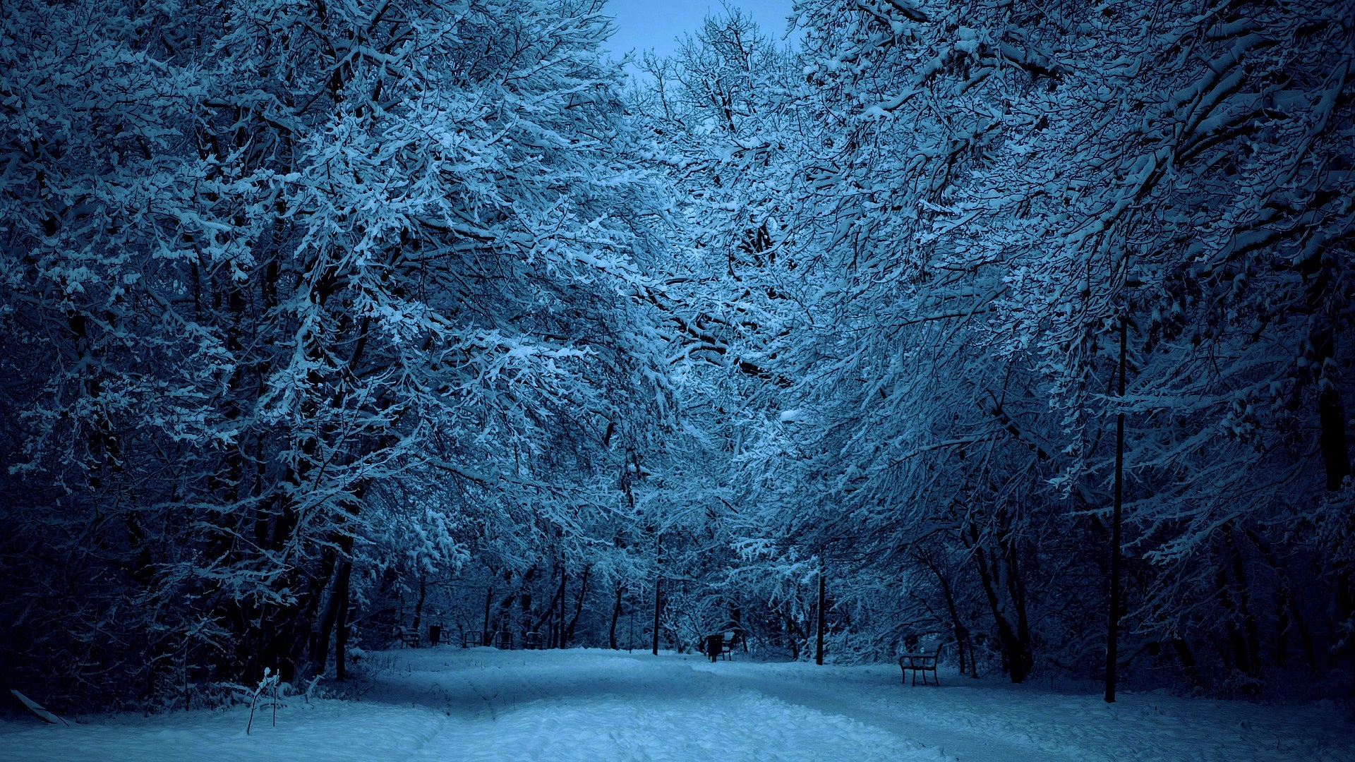 Snow-Covered Winter Street at Dusk Full HD Wallpaper and ...