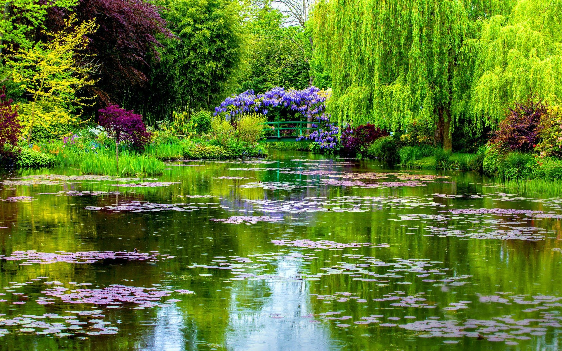 "Monet's Garden"" in Normandy, France Fondo de pantalla HD 
