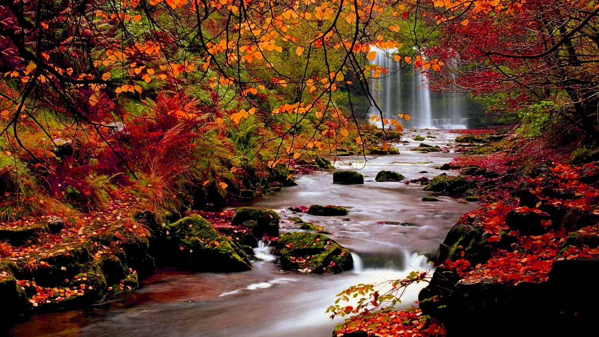 Waterfall In Autumn Forest HD Wallpaper