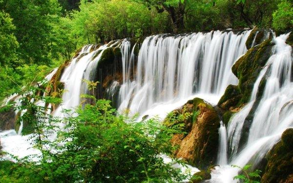 Earth Waterfall Waterfalls Forest Green Tree Bush Rock Nature Shrub HD Wallpaper | Background Image