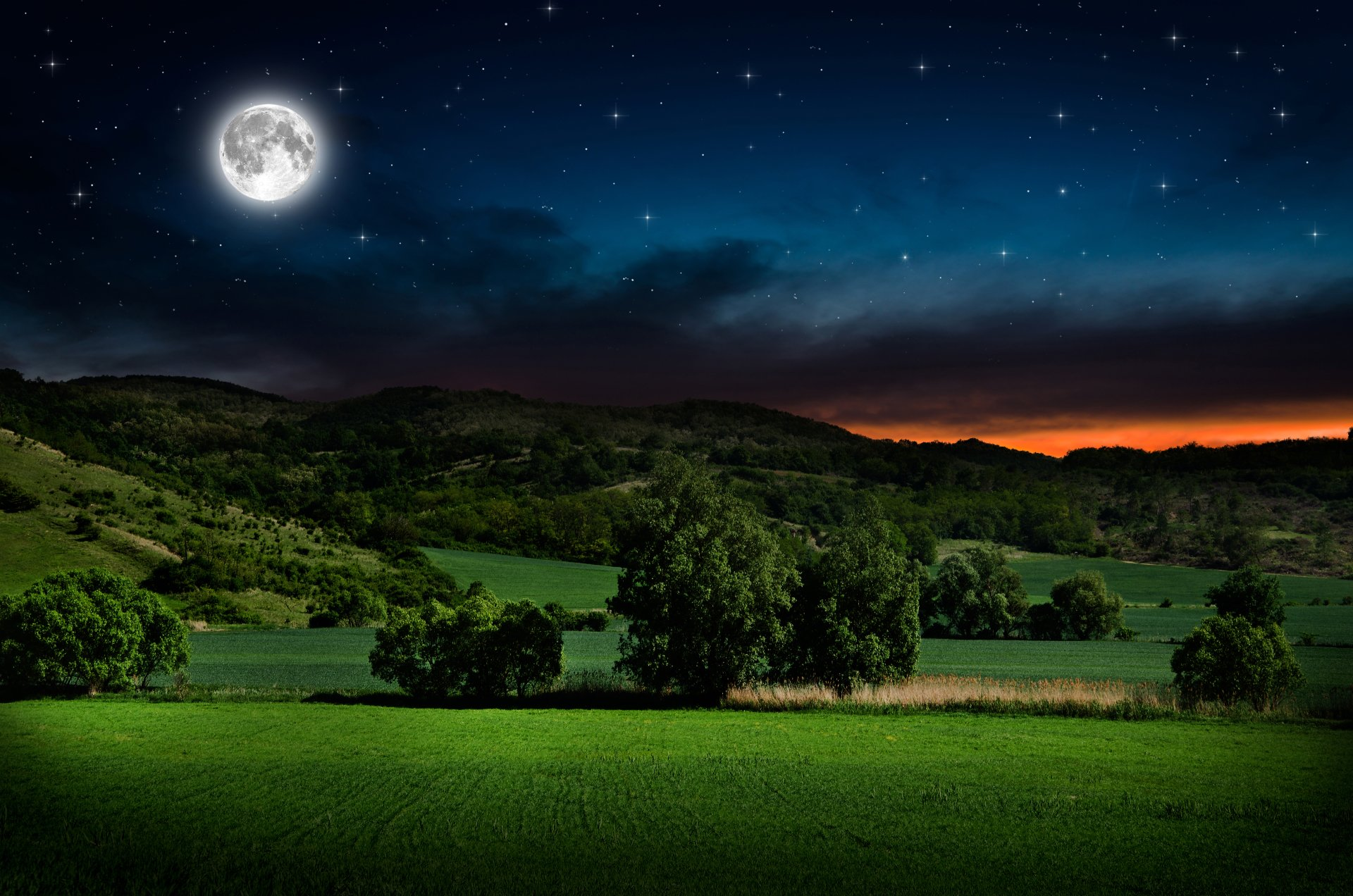 Full Moon And Starry Sky Over Green Field 4k Ultra HD