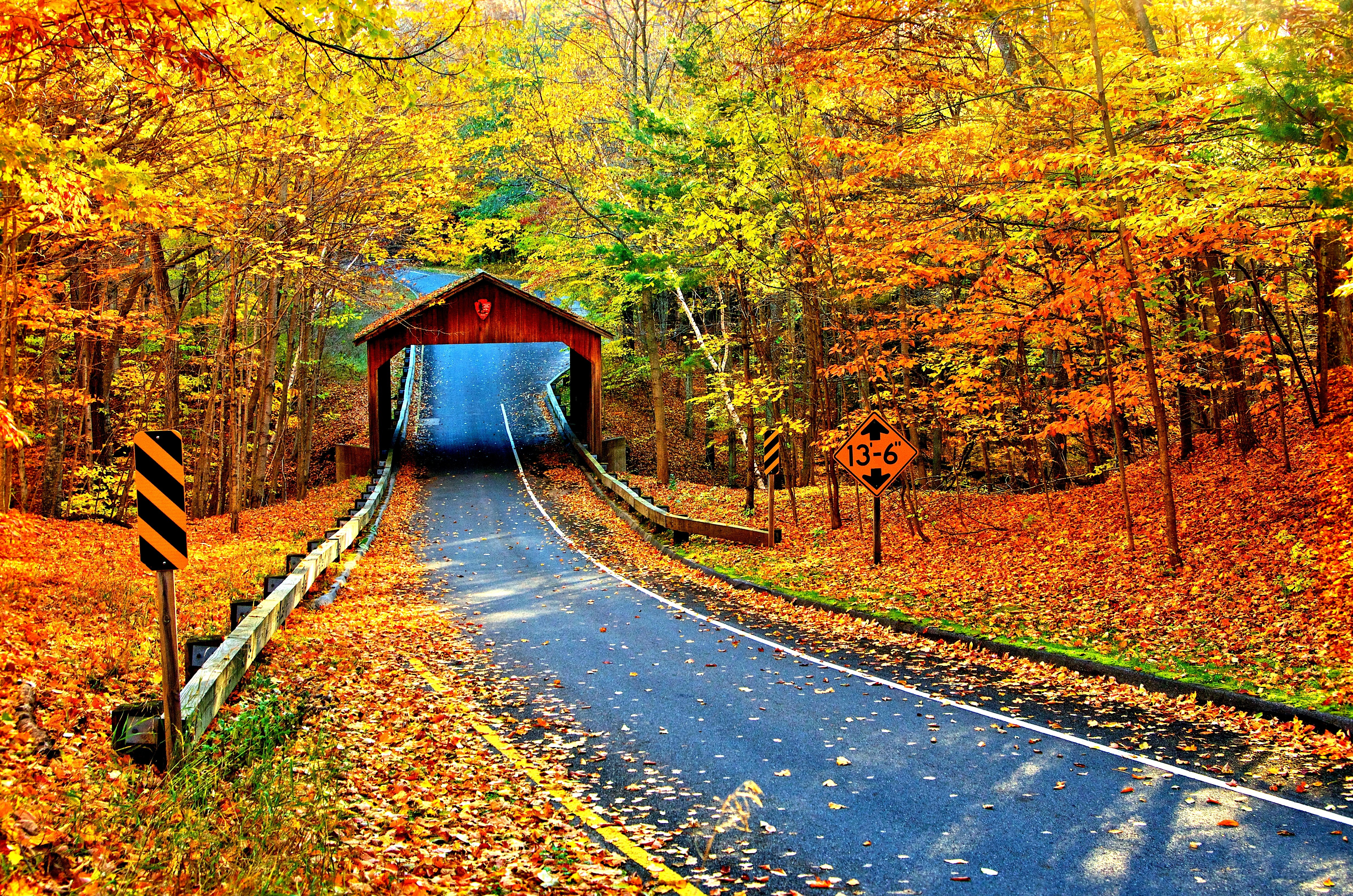 Covered Bridge On Autumn Road 4k Ultra HD Wallpaper And Background