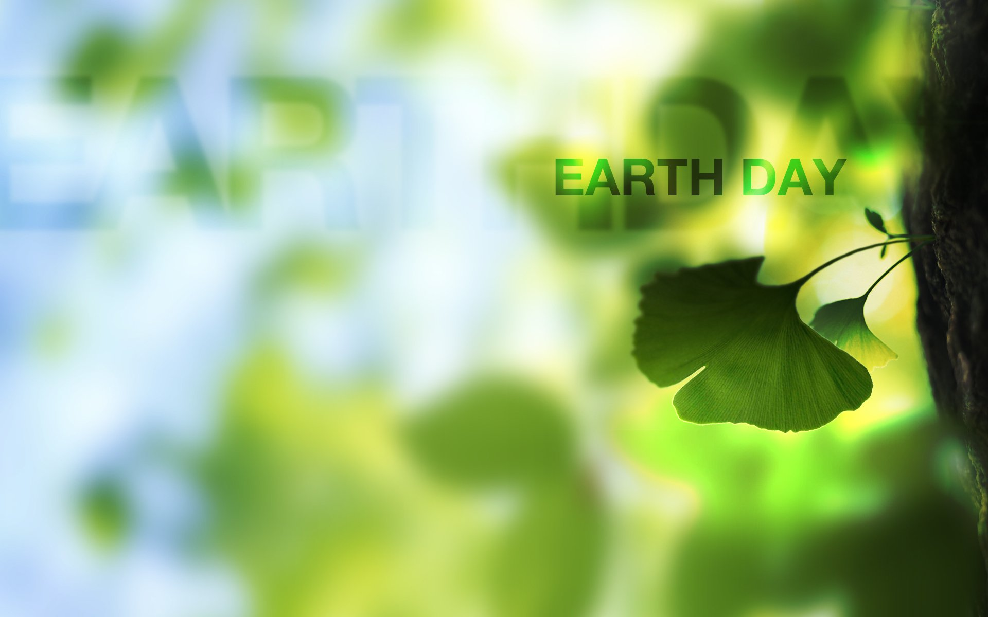 Earth Day Hd Wallpaper Background Image 1920x1200 Id 691136