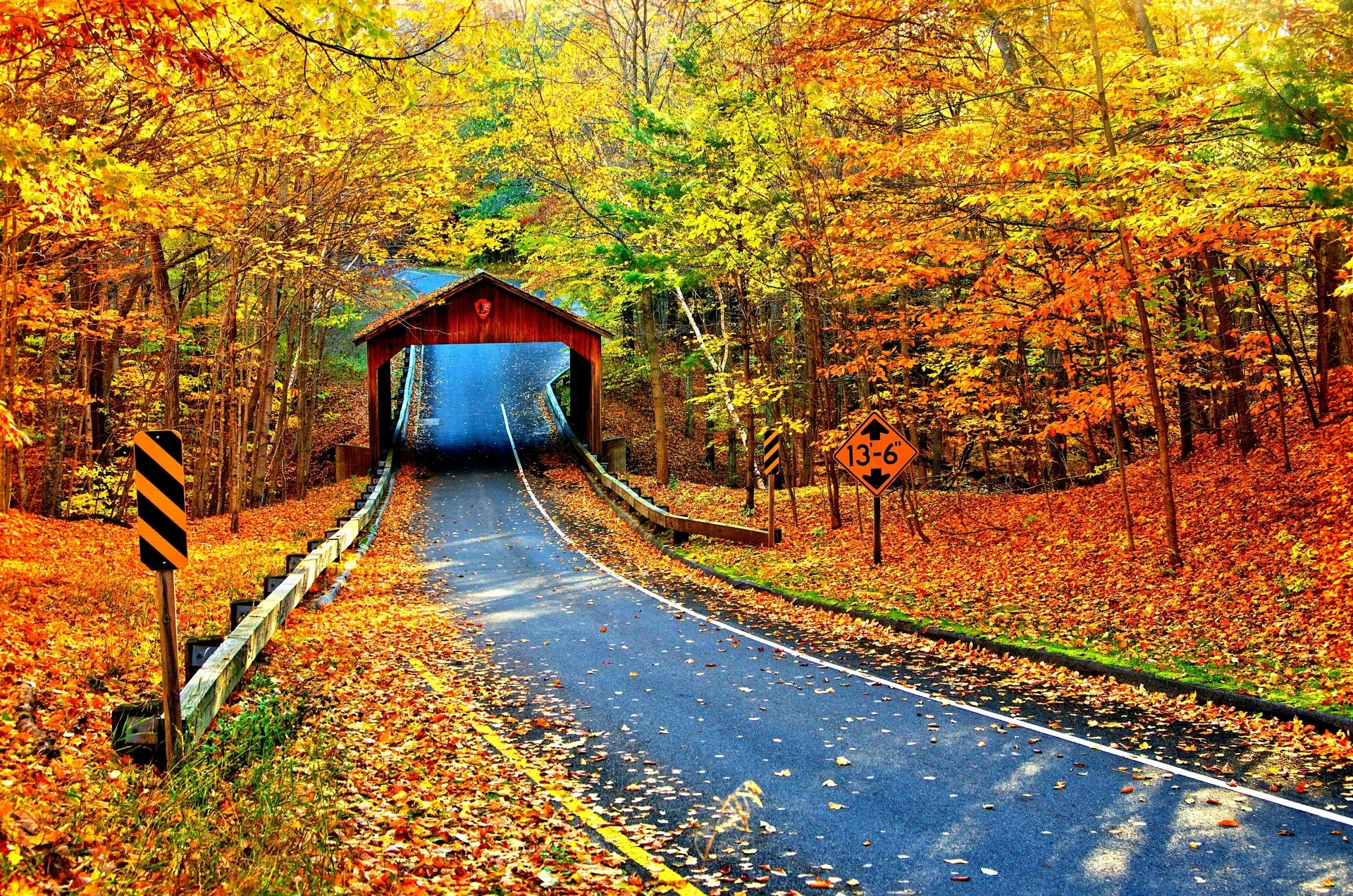 Covered Bridge On Autumn Road 4k Ultra HD Wallpaper