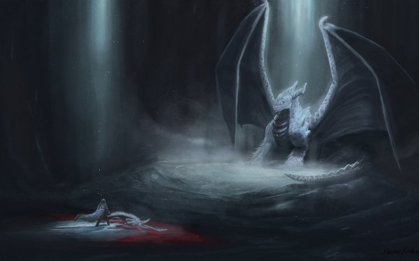 Fantasy Dragon Warrior Duel Dark Cave Light HD Wallpaper | Background Image