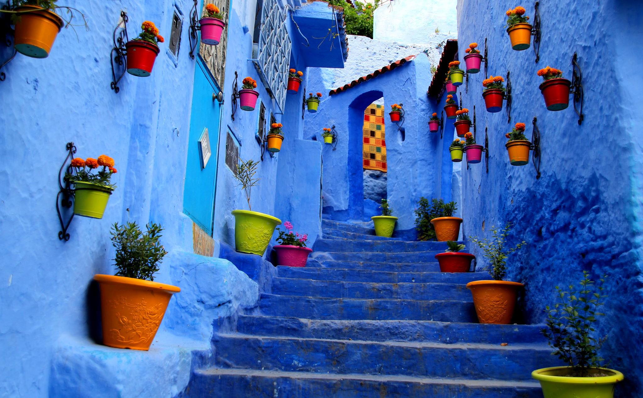 Blue Flower Pot Paint