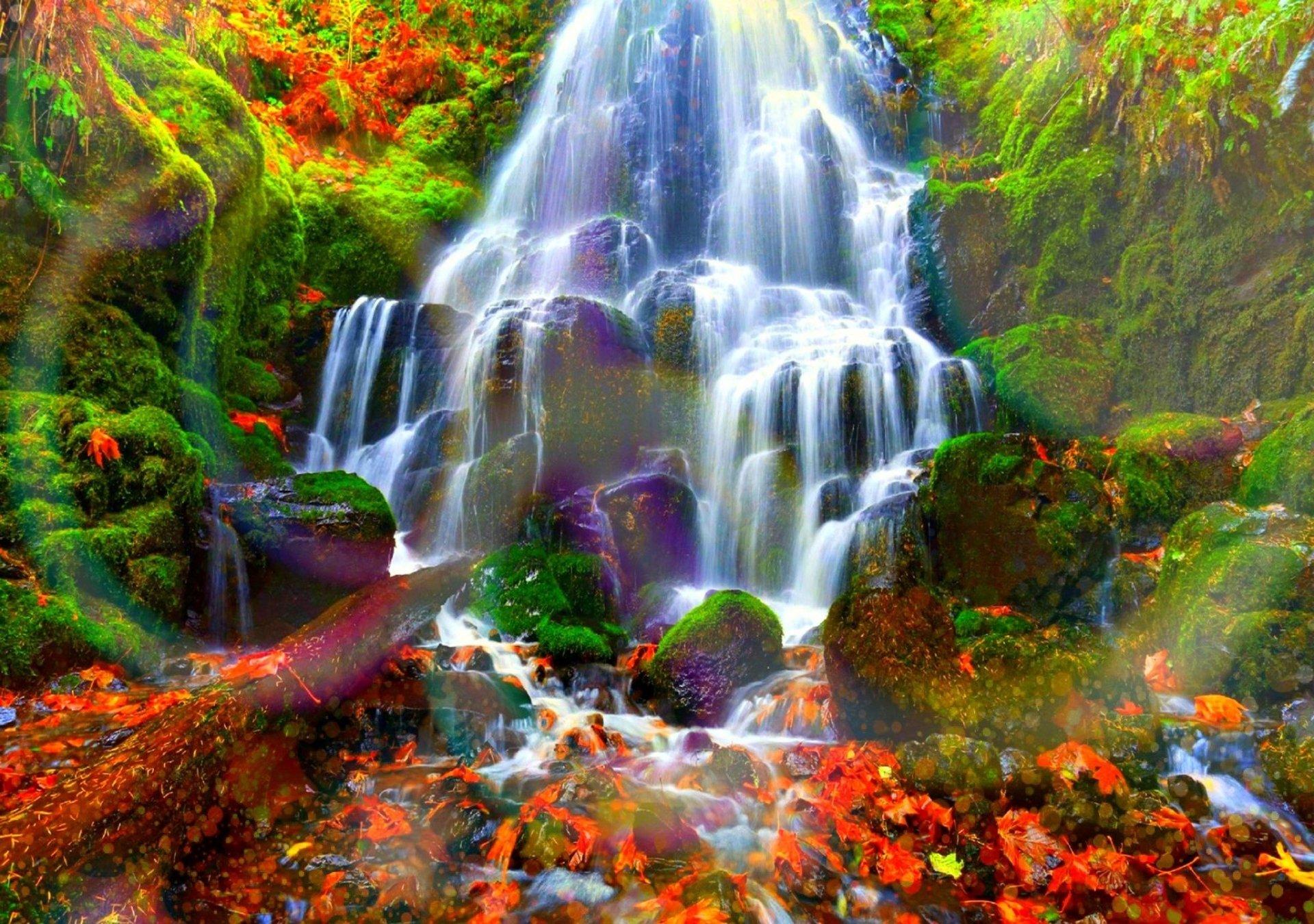 Autumn Forest Water Cascades HD Wallpaper   Background Image   2048x1440   ID:697361 - Wallpaper ...