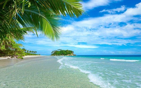 Tierra/Naturaleza Playa Tropico Océano Sea Palmera Turquesa Horizon Fondo de pantalla HD | Fondo de Escritorio