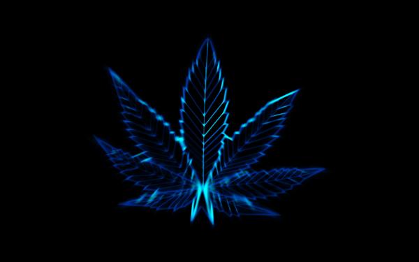 Artistic Marijuana Blue Neon HD Wallpaper | Background Image