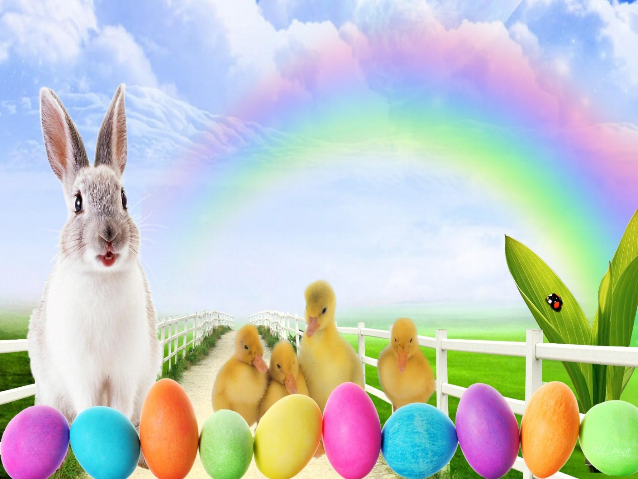 Easter bunny eggs and peeps hd wallpaper background - Easter bunny wallpaper ...