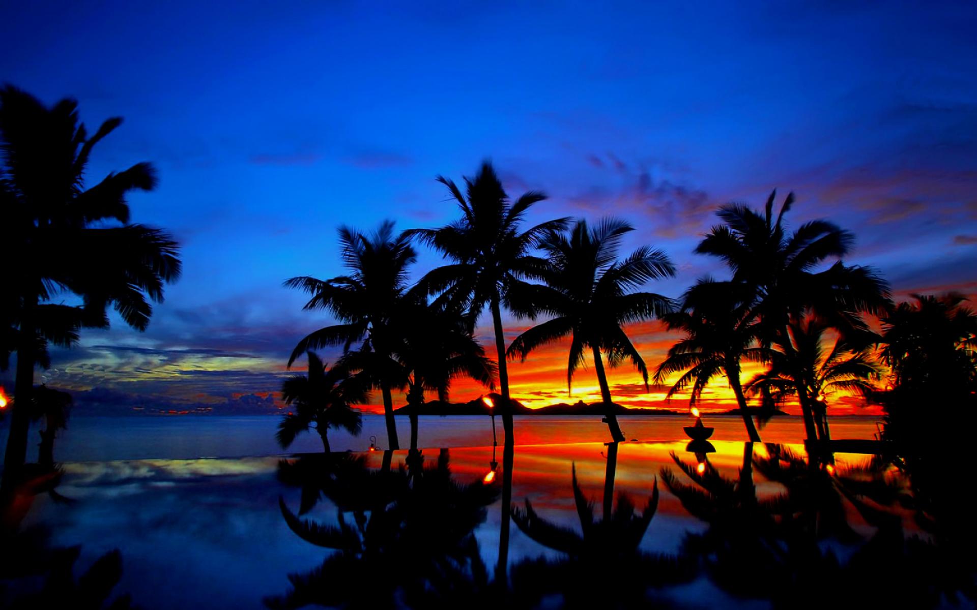 Tropical Sunset HD Wallpaper