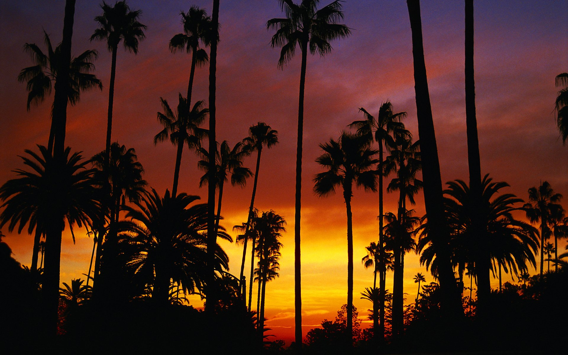 California Sunset HD Wallpaper | Background Image ...