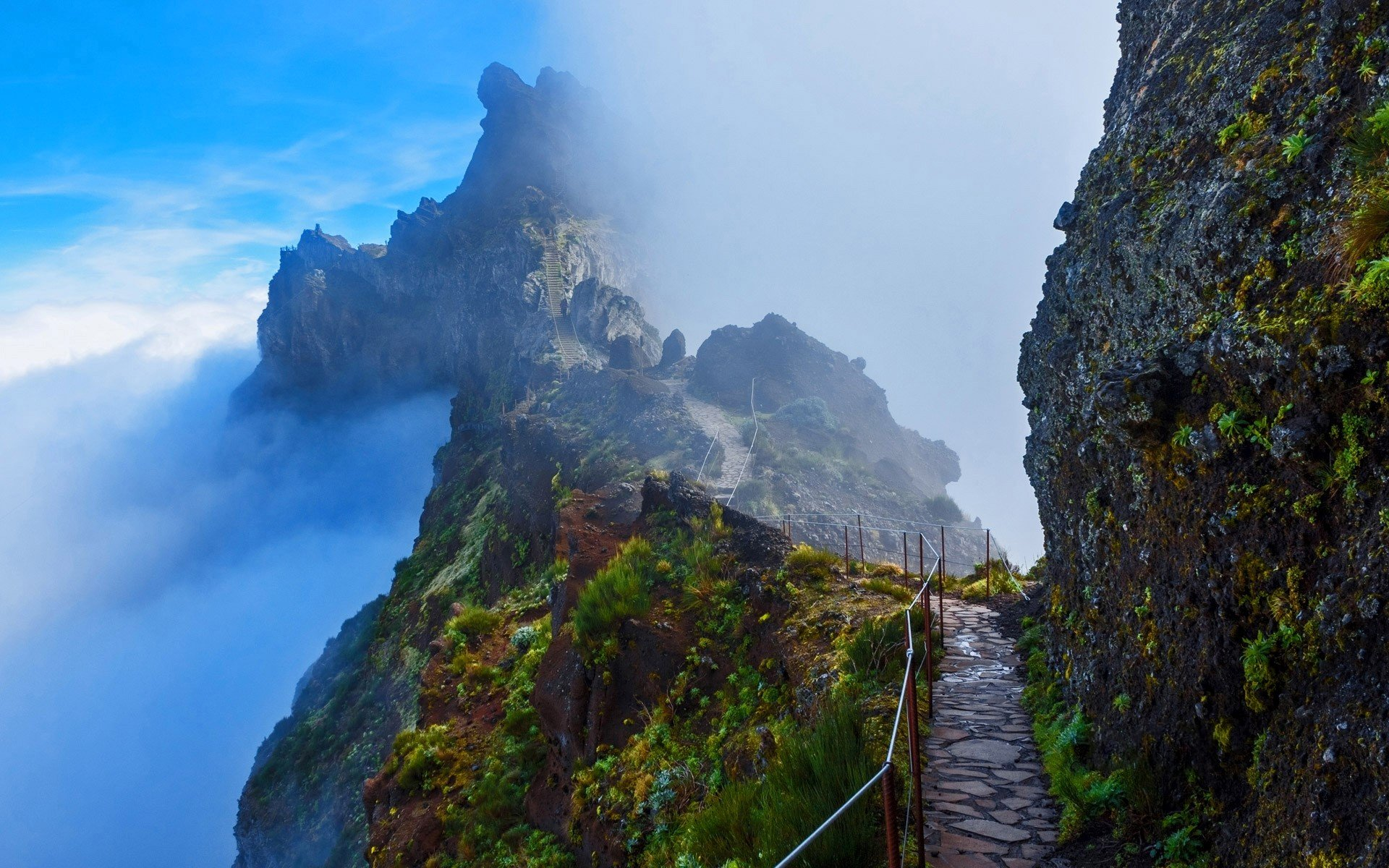 mountain trail in madeira portugal hd wallpaper background image 1920x1200 id 747966. Black Bedroom Furniture Sets. Home Design Ideas