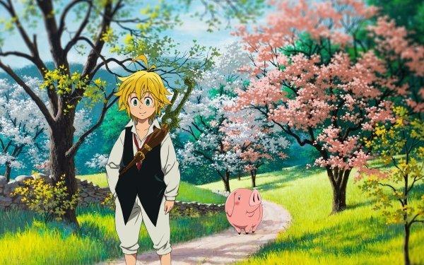 Anime The Seven Deadly Sins Meliodas Hawk HD Wallpaper | Background Image