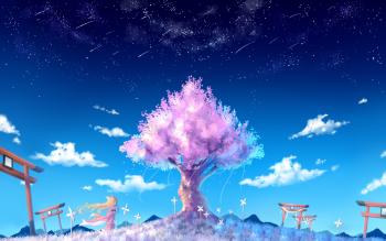 HD Wallpaper | Background ID:767346