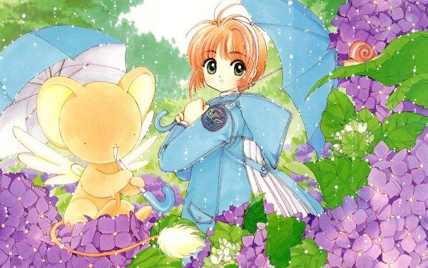 Anime Cardcaptor Sakura Sakura Kinomoto Keroberos Snail HD Wallpaper   Background Image