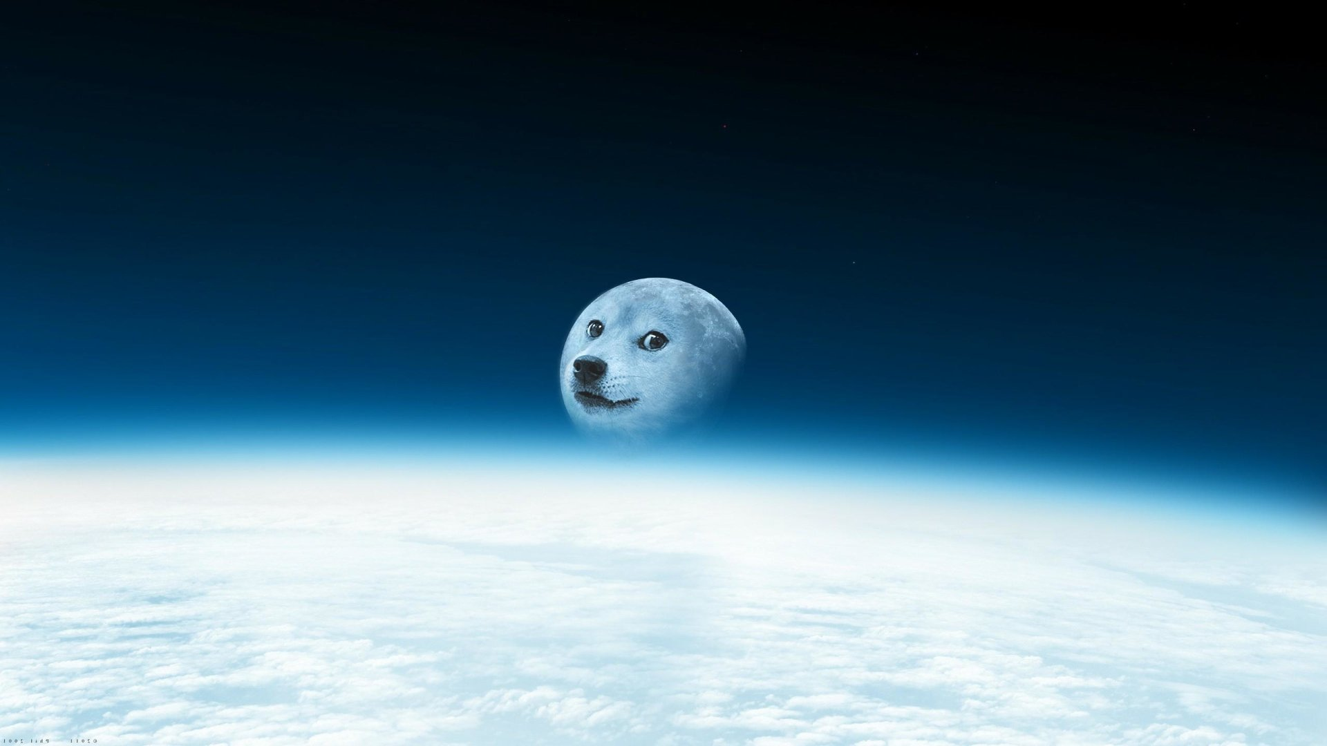 Humor - Doge  Moon Wallpaper