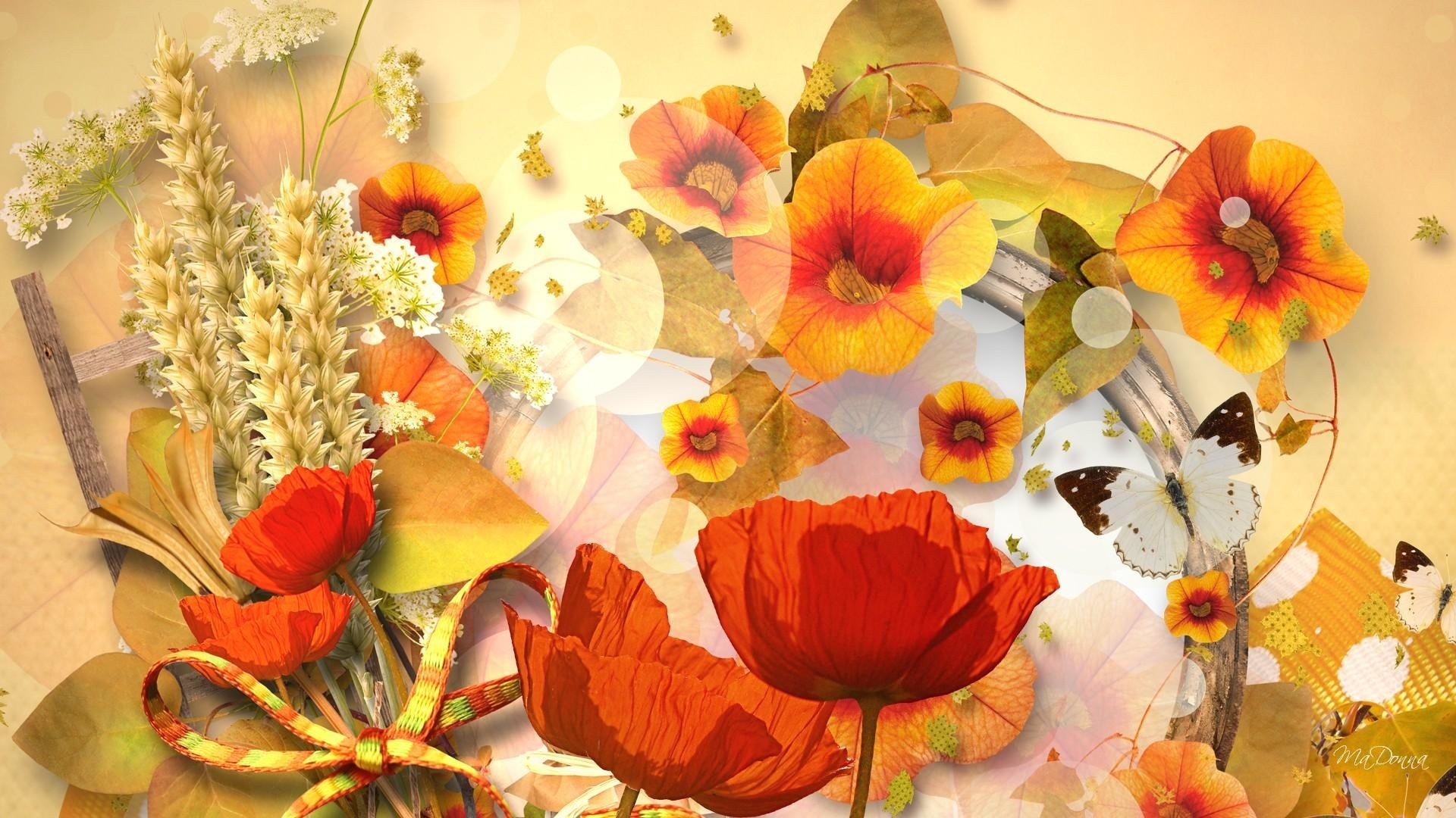fall flowers wallpaper by - photo #29