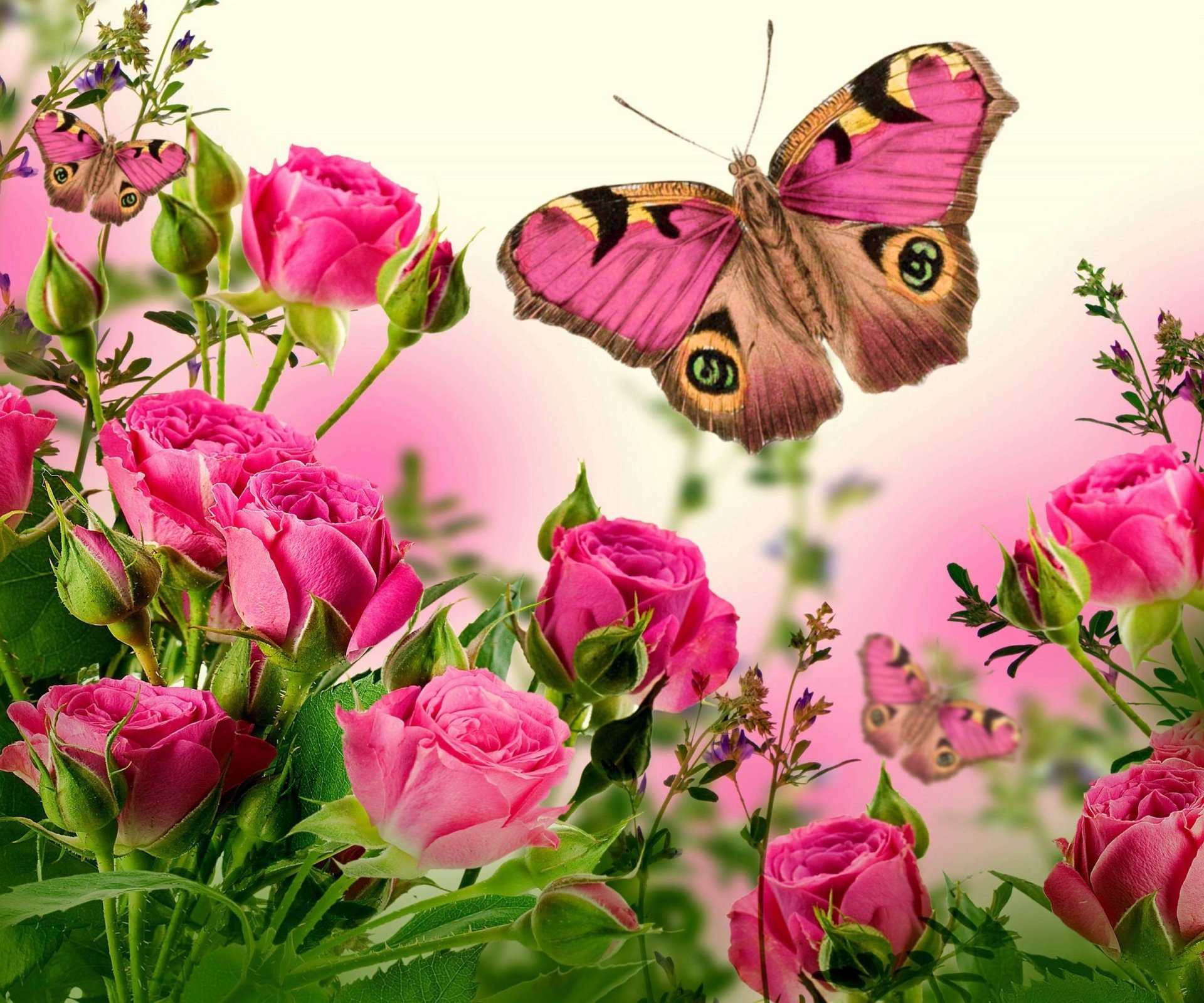 Wallpapers ID:772481