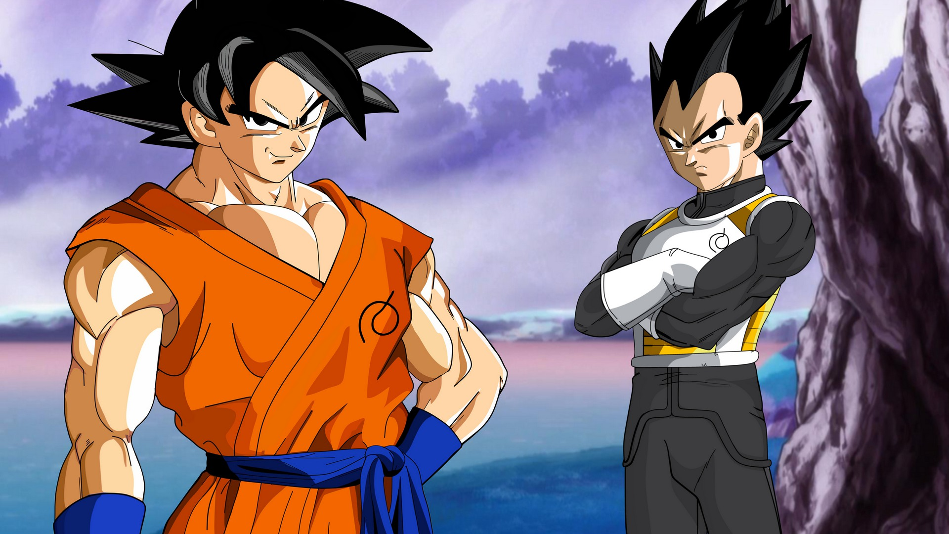 Vegeta Und Son Goku
